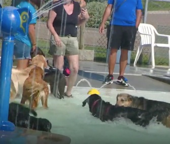 Dogs got the chance to take over a water park in Idaho on the last day of its summer season.