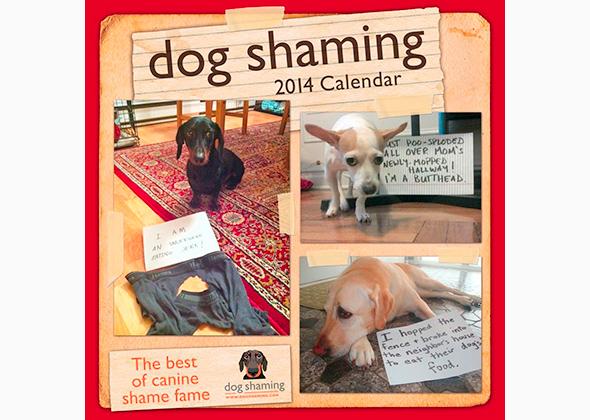 Dog Shaming Calendar 2014