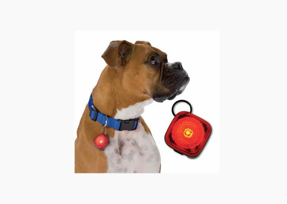 FetchDog Beacon Safety Dog Light