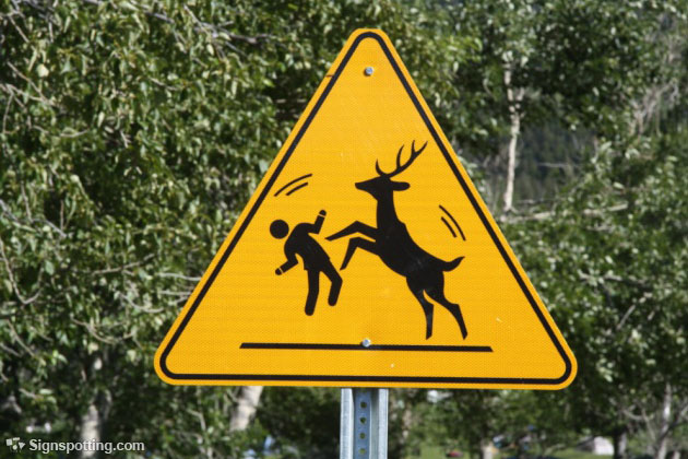 Combative Deer Crossing