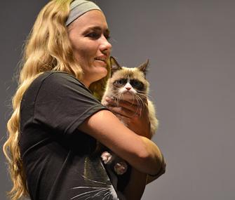 International Cat Video Festival Grumpy cat