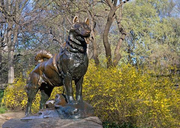 Balto Statue in Central Park