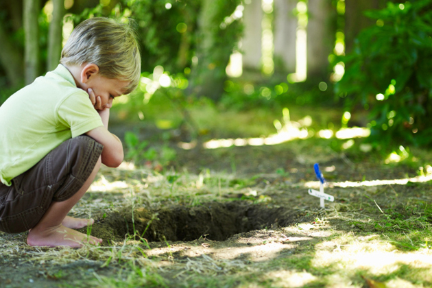 Boy sits by pet's grave