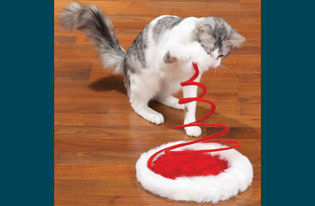 Interactive Cat Toys for Your Festive Feline