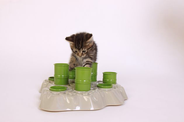 Aikiou Stimulo Cat Feeding Station