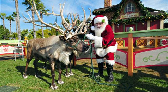 Santa at SeaWorld