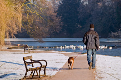 Man walking dog in winter