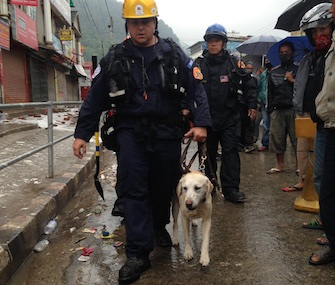 Ripley, a former shelter dog, walks with his handler, Jason Vasquez, just before the rescue of a teen in Nepal.