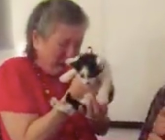 A high school teacher in Texas was surprised with two cute kittens from her students.
