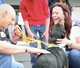 Zeus was reunited with his family in Washington state Friday after a 3,000-mile trip across the country.