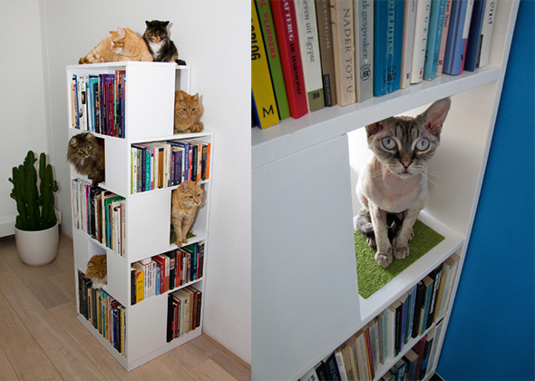 Gorgeous Furniture That Works For Both You And Your Cat