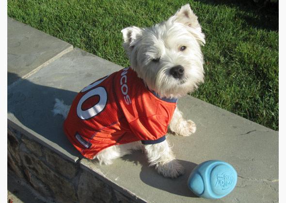 Cooper wearing Denver Broncos jersey