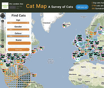 The London Zoo's Cat Map