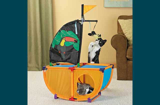 Kitty Pirate Ship