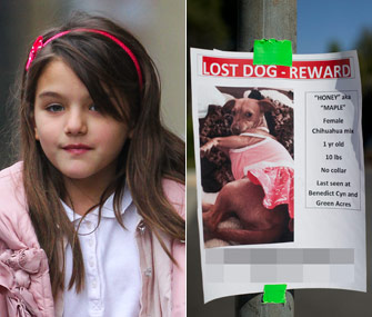 Suri Cruise and her lost dog