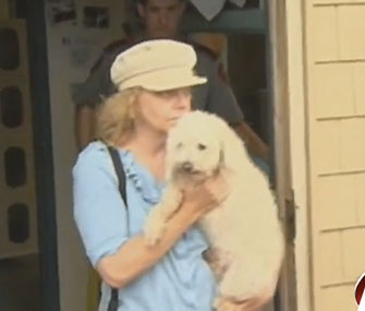 Suzie the poodle is reunited with her owner.
