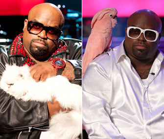 Cee Lo Green's Purrfect the cat vs. Lady the cockatoo
