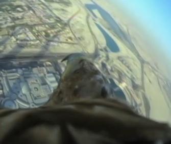 Darshan gave a stunning birds-eye tour of Dubai.