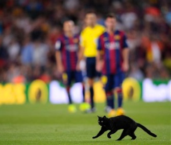 A black cat interrupted play at Barcelona's season opener Sunday.