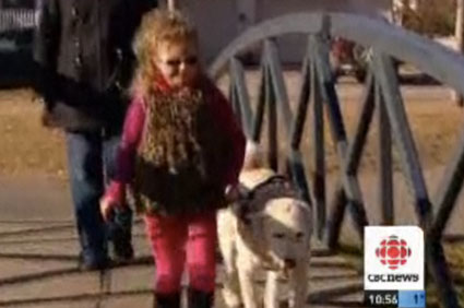 Autistic girl and service dog