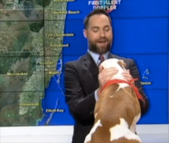 One-year-old King hopped right into Ryan Phillips' weather forecast on South Florida's NBC 6.