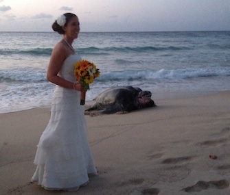 Kate Crowe poses near her surprise wedding guest: a leatherback sea turtle.