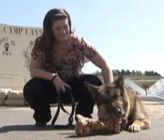 Ex-Marine Megan Leavey was reunited recently with Sergeant Rex.