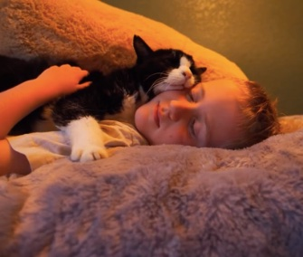 Dexter, who was 20 when he was adopted, loved to snuggle with his family's young sons.