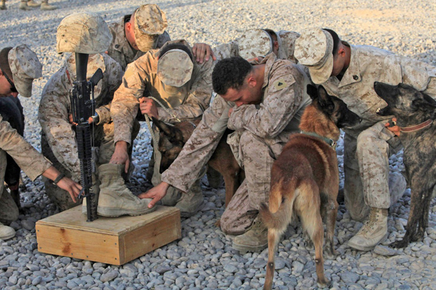 Marine dog handlers mourn the loss of a beloved fellow handler