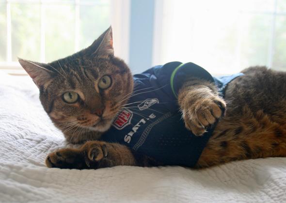 Dolce wears Seahawks jersey