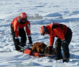 Coast Guard officers rescued a lost dog stranded on Michigan's frozen Lake St. Clair on Monday.