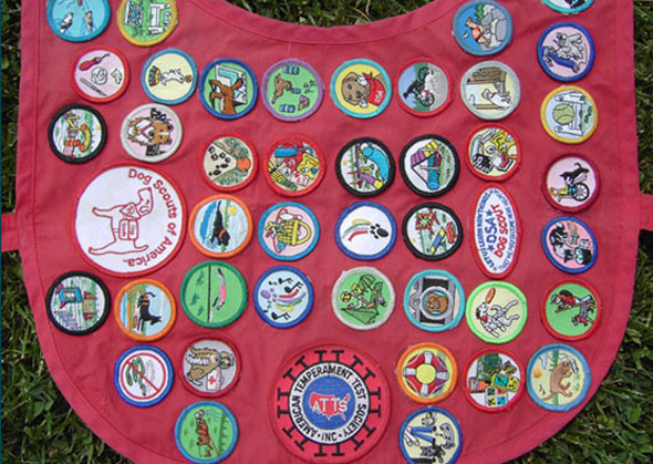 Dog Scouts Badges