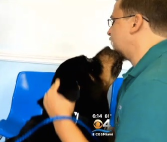 Duke was found on the streets in Miami and reunited with his owner after 7 years.
