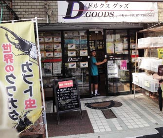 Japanese bug store