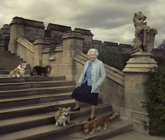 Holly, front left, posed with Queen Elizabeth and her three other dogs for her 90th birthday.