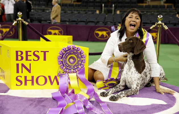 Valerie Nunes-Atkinson and Best in Show winner CJ pose after their Westminster win.