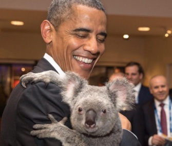 President Obama holds a koala at an event before the G20 summit in Brisbane, Australia.