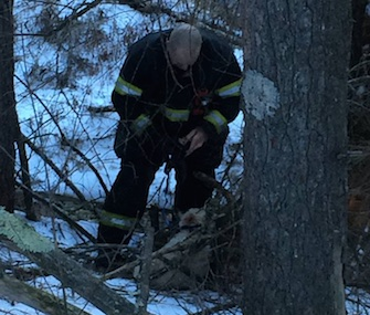 Dog rescued in Orange, Massachusetts