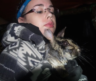 Graduate student researcher Sarah Woodfin holds a rare Annamite striped rabbit in Vietnam.