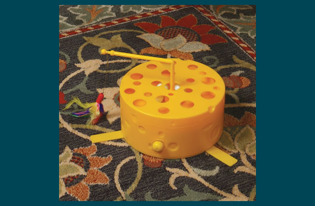 Swiss Cheese Motion Toy