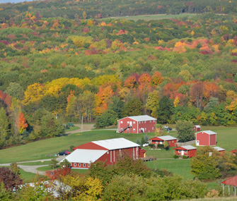 sky view of a farm