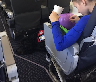 Chug sits at Bryant Weasel's feet before they were asked to get off an American Airlines flight on Thanksgiving Day.