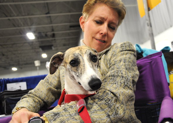 Gretchen Vanderford and Whippet Savannah