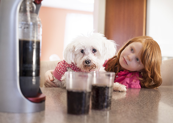 Things in the Home That Scare Pets SodaStream Machine