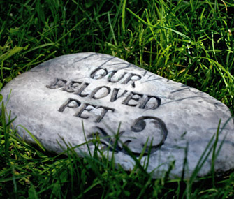 Deceased pet headstone