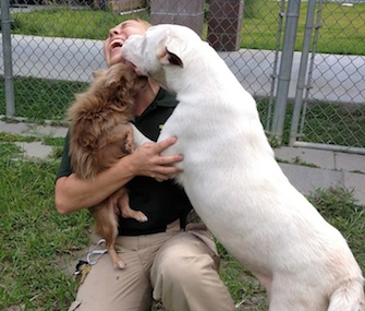 Joanie and Chachi give Animal Control Officer Christina Sutherin love after hearing about their new home.