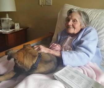 Daisy, an 11-week-old police puppy, got a big smile from nursing home resident Muriel in England.