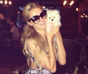 Paris Hilton shared this photo of herself with her tiny new puppy on Instagram.