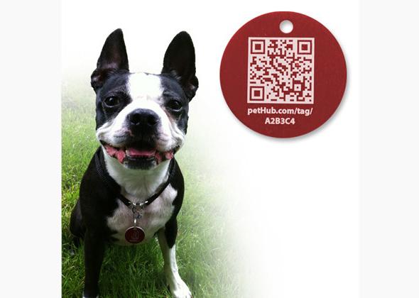 Pet Hub SmartLink Tag