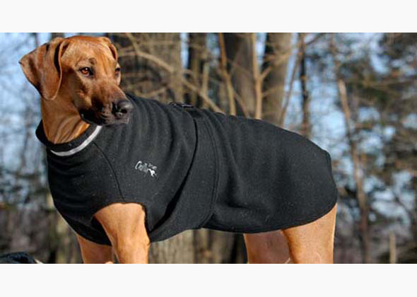 Chilly Dogs Fleece Sweater